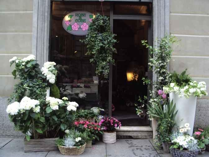 piante fiori idee regalo rose e cose portale