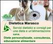 Logo Dietista Dr.ssa Marasco E.