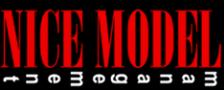 Logo NICE MODEL snc