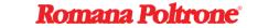 Logo Romana Group s.r.l.